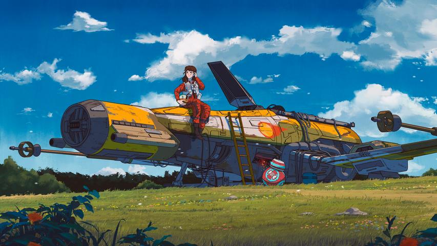 grass sky outdoor airplane text vehicle aircraft cloud