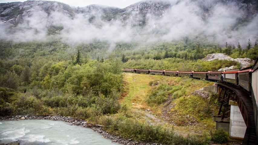outdoor grass train plant steam tree smoke railroad