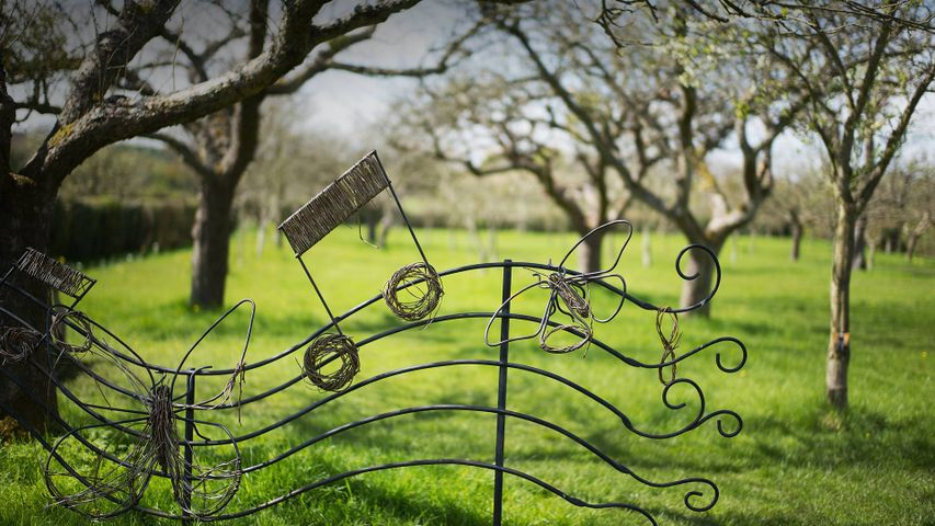 A musical note in the garden of Anne Hathaway's Cottage, Stratford-upon-Avon