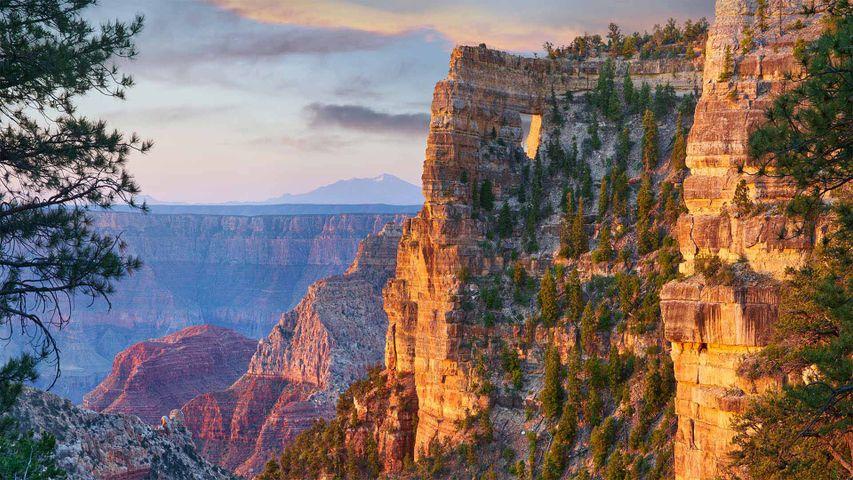 「グランドキャニオンノースリムのエンジェルウィンドウ」米国, アリゾナ州