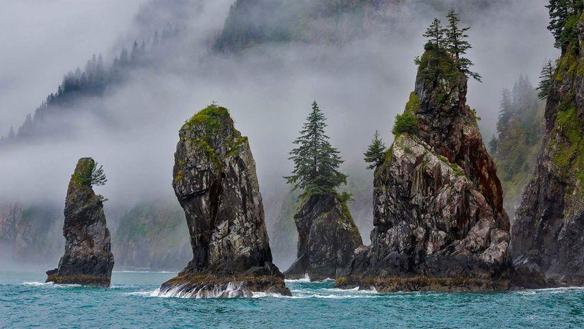 The Cove of Spires in Kenai Fjords National Park near Seward, Alaska, USA