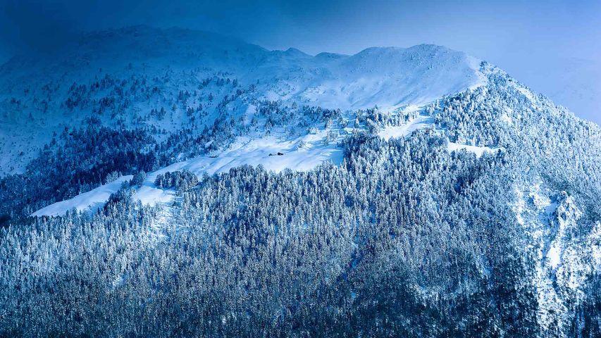 Panorama des Alpes sous la neige, France