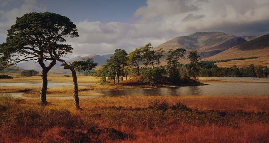 Loch Tulla in the Western Highlands, Scotland, UK