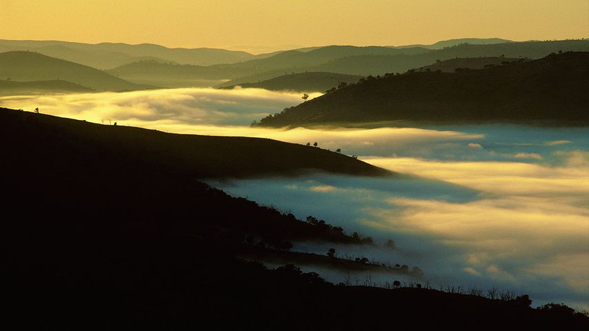 Mist in a valley near Bathurst in New South Wales, Australia