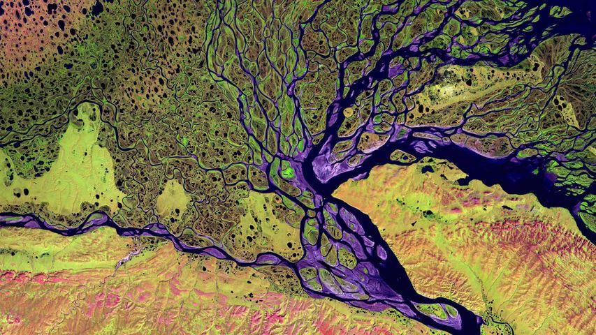 The Lena Delta Wildlife Reserve in Siberia, Russia