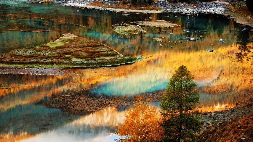 秋日湖面上,多彩树木的倒影