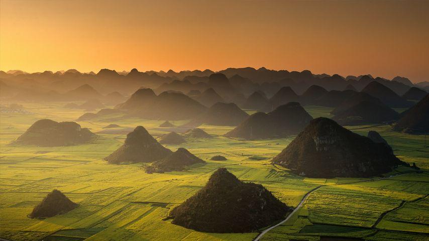 云南罗平的清晨
