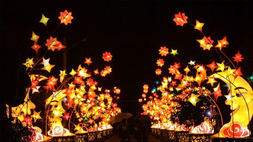 北京中秋圆明园灯会
