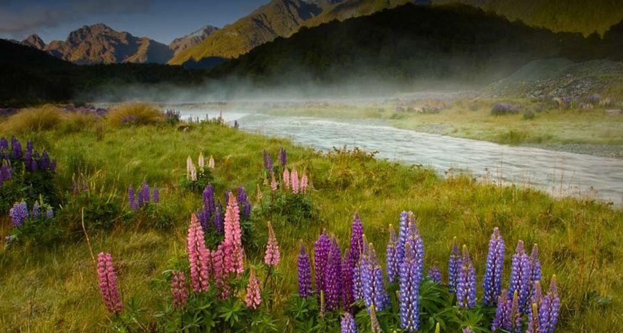 无处不浪漫:神秘的新西兰峡湾国家公园 – Tony Ernst ©