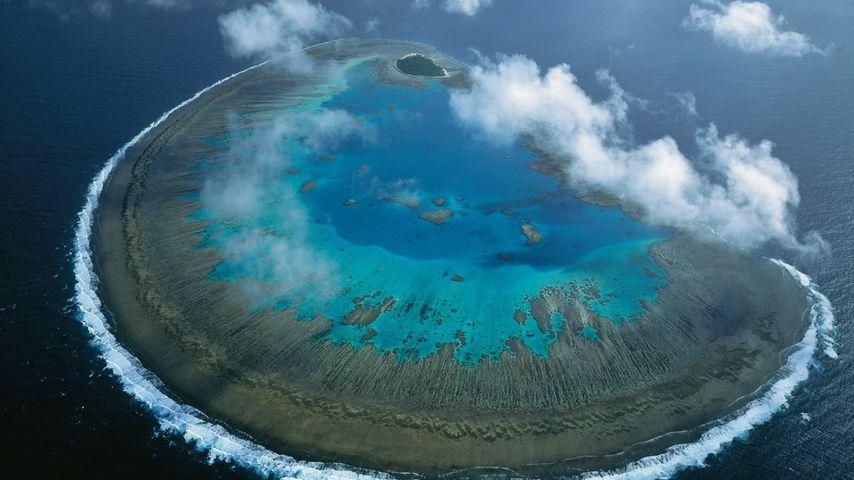 「レディー・マスグレイブ島」オーストラリア, グレートバリアリーフ
