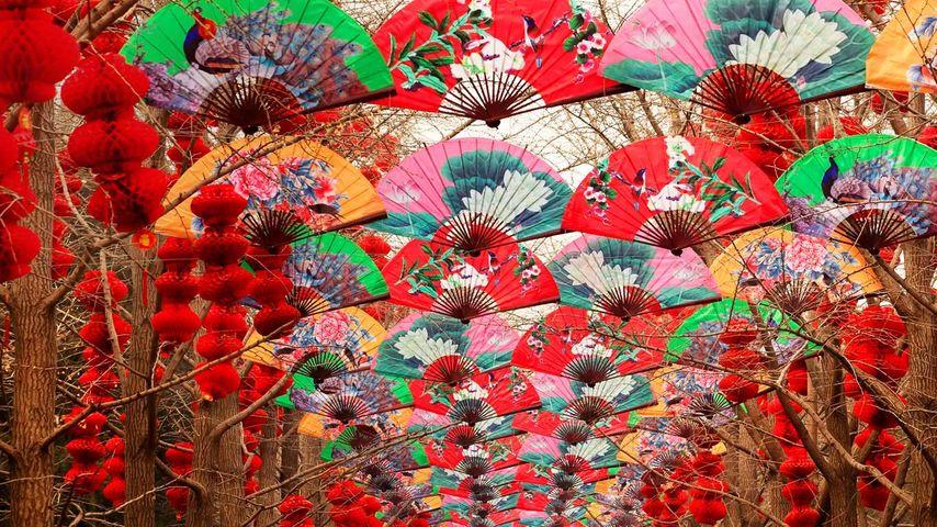 北京天坛春节期间,纸扇与红灯笼