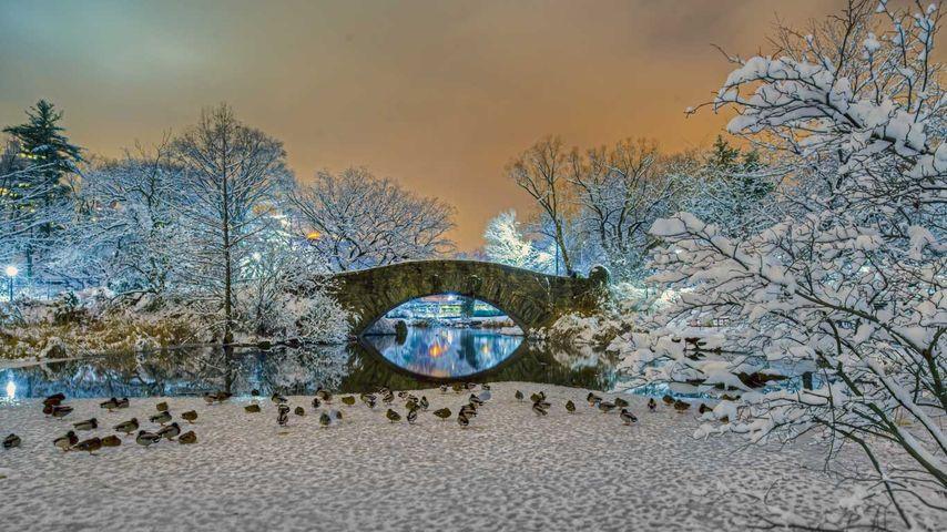 「ギャプストウ橋」アメリカ, ニューヨーク