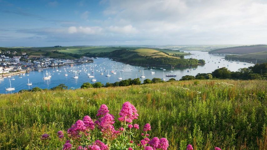 Salcombe Harbour and Kingsbridge Estuary in the South Hams district of Devon