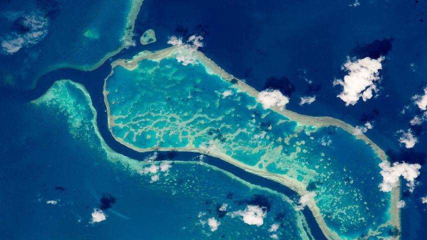 从国际空间站拍摄的大堡礁