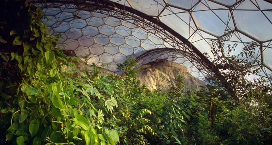Die subtropische Biosphären-Kuppel im Eden Project, Cornwall, England  – Harpur Garden Library/Corbis ©