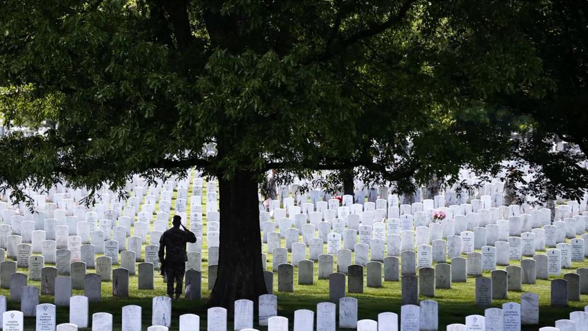 The 3rd US Infantry Regiment honors America's fallen soldiers during the 'Flags In' ceremony for Memorial Day, Arlington National Cemetery, Virginia