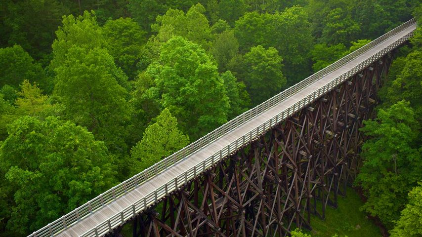 Trestle Eisenbahnbrücke, Virginia Creeper Wanderweg, Virginia