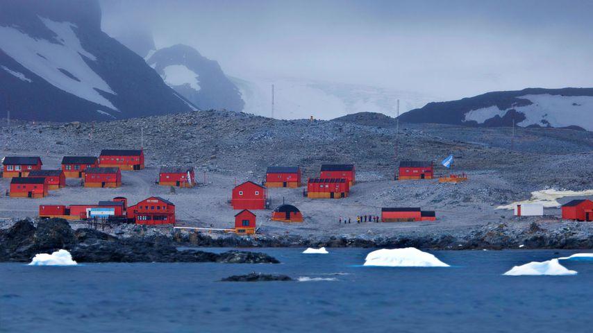 Base Esperanza, Antarctique