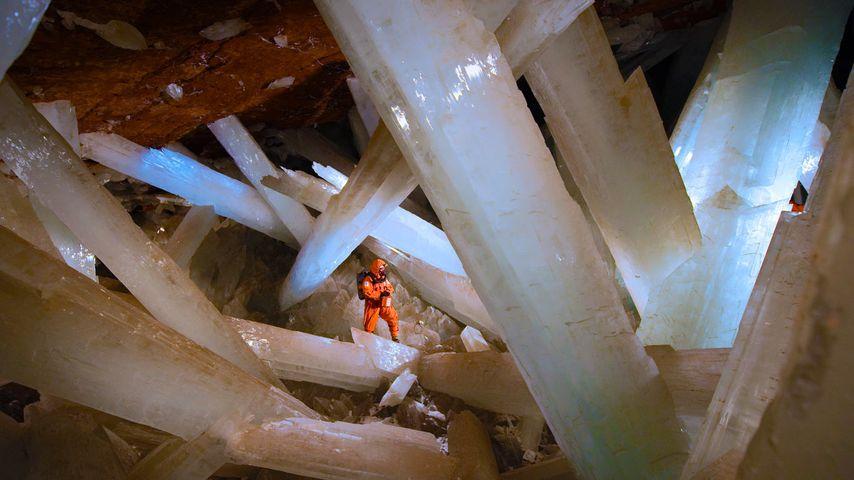 Cristaux géants de sélénite dans la grotte des Cristaux, Naïca, Mexique