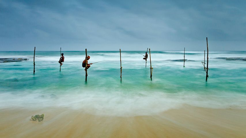 Stilt fishing in Koggala, Sri Lanka