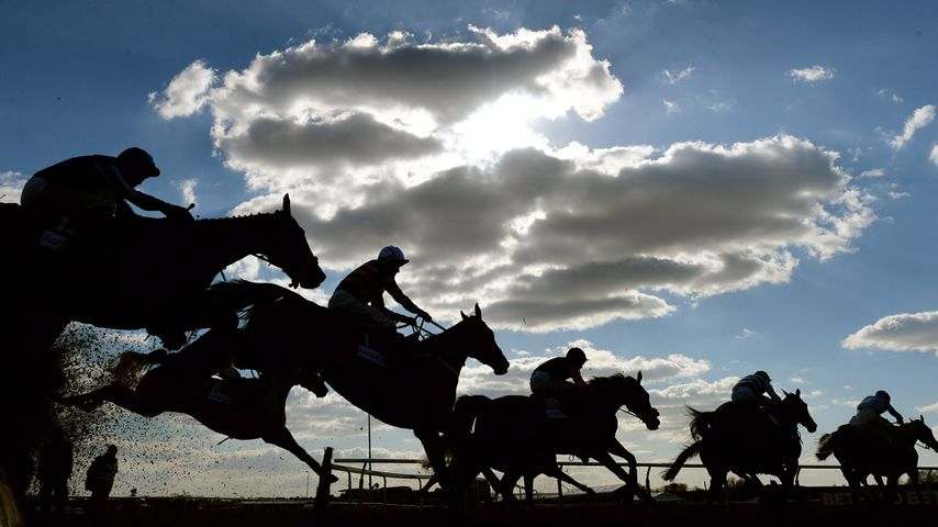 Riders and horses compete at Aintree Racecourse