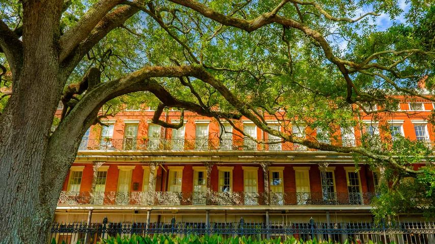 View from Jackson Square, New Orleans, Louisiana