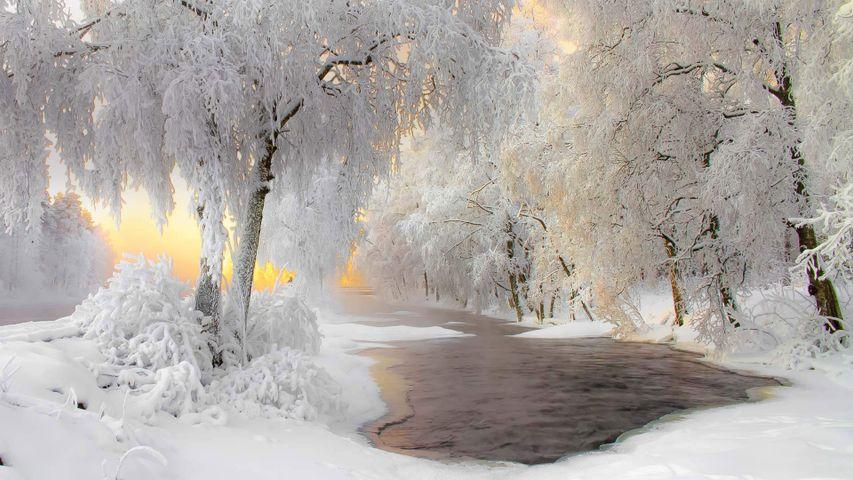 库赫莫附近的冬日美景,芬兰