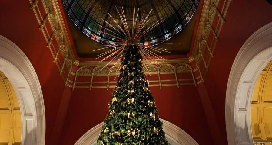 Christmas tree under the dome of the Queen Victoria Building. Sydney, New South Wales, Australia.