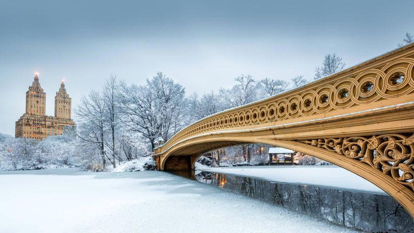 Bow Bridge in Central Park, New York City, USA