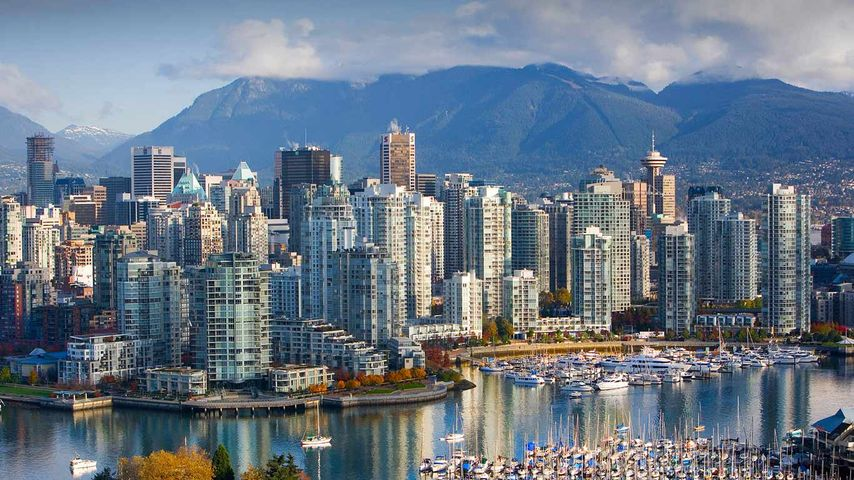 False Creek and Vancouver skyline, British Columbia
