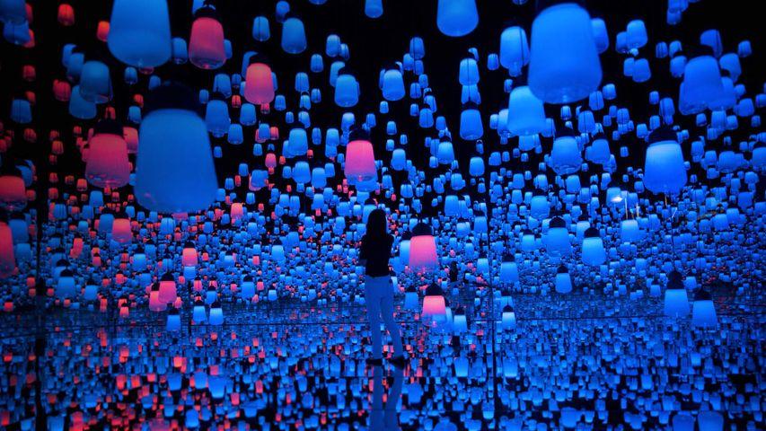 Hanging lamps at the Mori Building Digital Art Museum in Tokyo