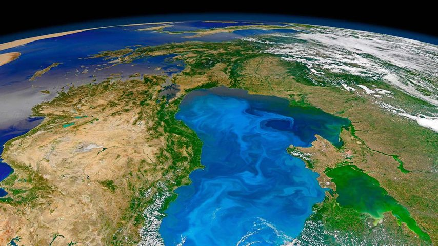 Bloom of microscopic phytoplankton scattered across the surface of the Black Sea