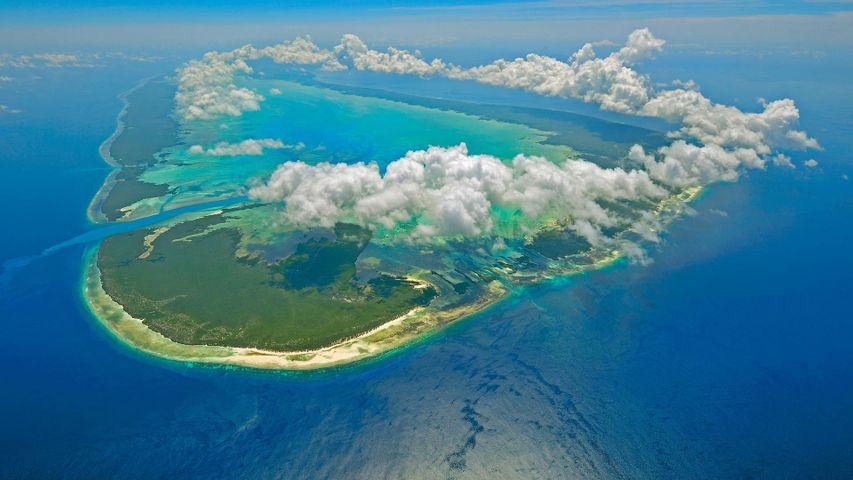 Aldabra of the Seychelles in the Indian Ocean