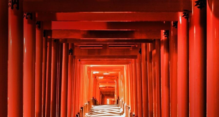 Pathway of torii gates at Fushimi Inari Shrine in Kyoto, Japan