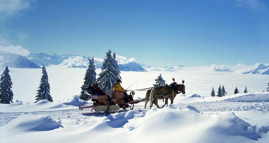 Pferdeschlitten, Schweiz