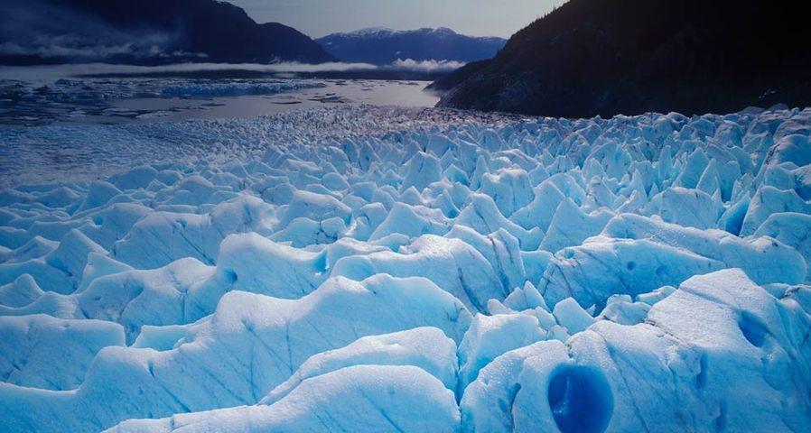 Great Glacier Provincial Park, Lower Stikine, British Columbia, Canada