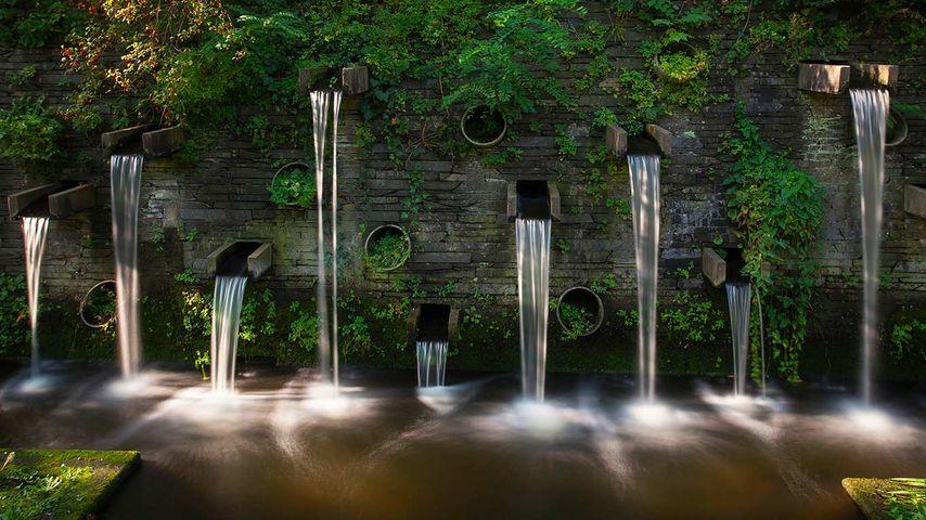 德国汉堡,花卉植物园的喷泉