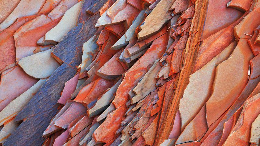 Steinstruktur in Hamersley Gorge, Karijini-Nationalpark, Australien