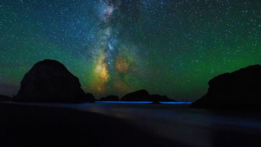 俄勒冈,塞巴斯蒂安州立公园的景观走道,满天繁星,海水闪烁