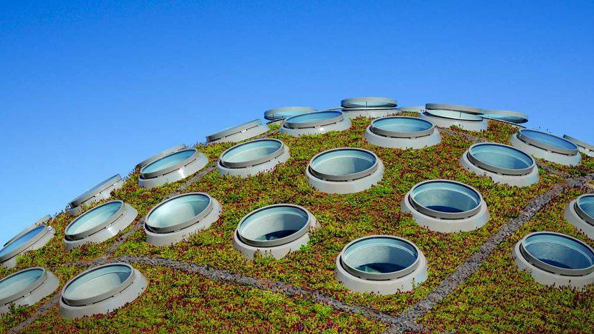 The Living Roof, California Academy of Sciences, Golden Gate Park, San Francisco, California
