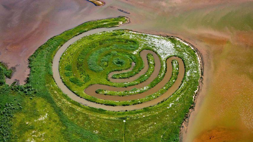 Installation by land artist Paul de Kort in De Biesbosch National Park, Netherlands