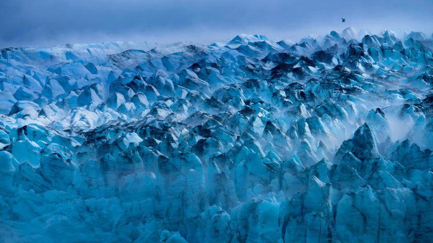 美国冰川湾国家公园内的兰普卢冰川