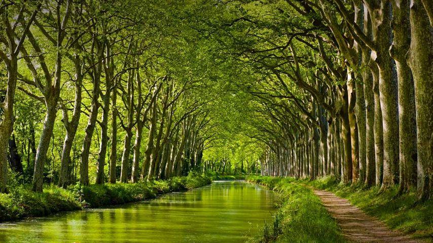 Canal du Midi bei Toulouse, Département Haute-Garonne, Region Midi-Pyrénées, Frankreich