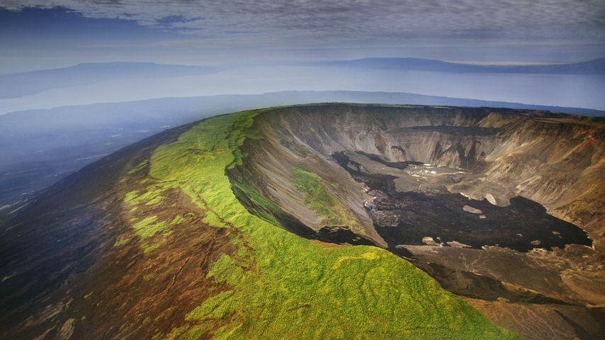 Aerial view of a volcano caldera, Isabela Island, Galápagos Islands, Ecuador