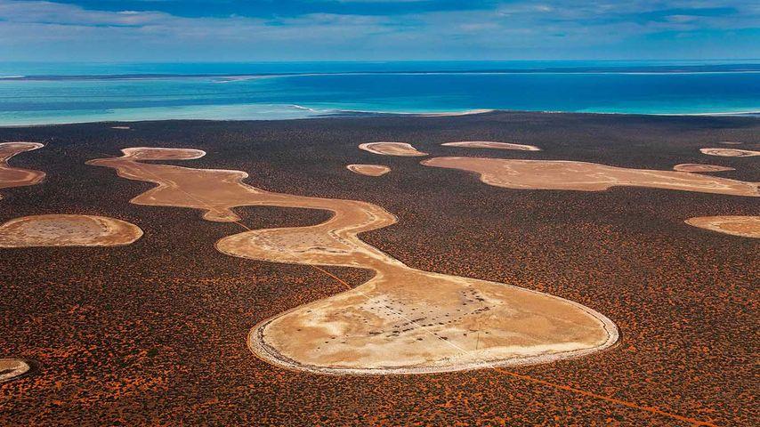 Gypsum claypans in Francois Peron National Park, Western Australia