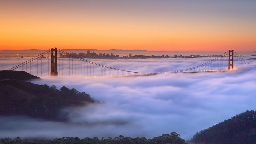 Golden Gate Bridge im Nebel, San Francisco, Kalifornien, USA