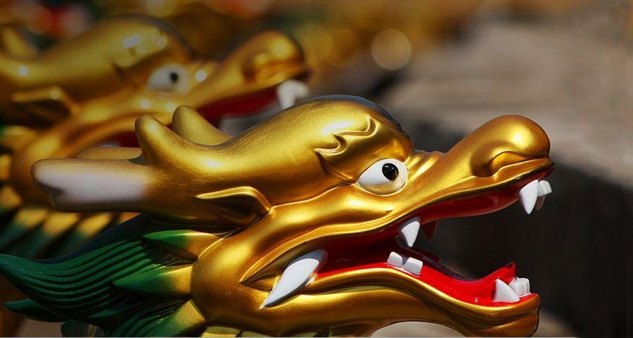 龙舟上的金色龙头