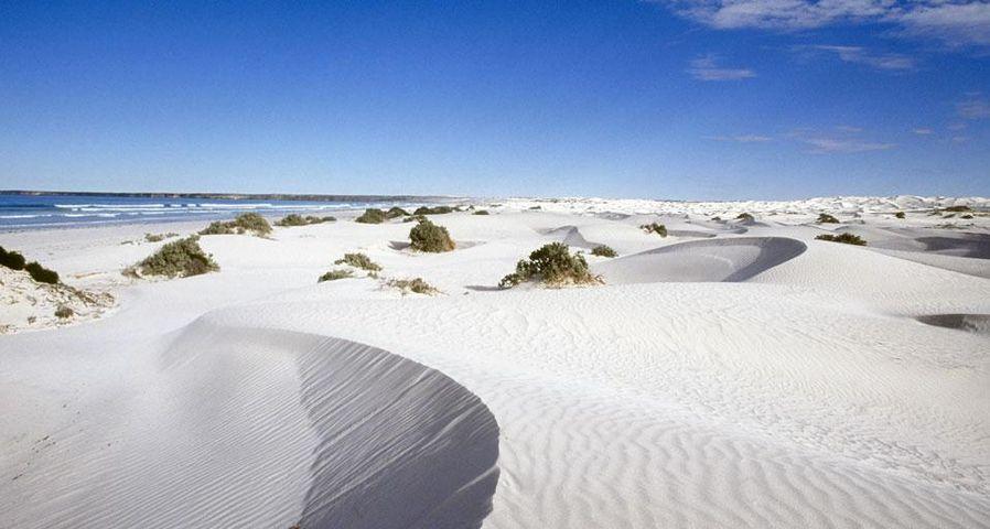 Coombra sand dunes, Head of Bight, Eyre Peninsula, Australia