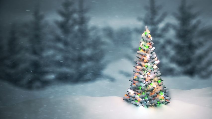 A wintry scene for Christmas