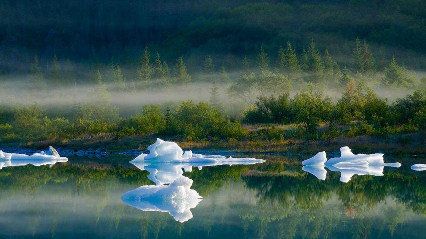 Bear Glacier Lake in Kenai Fjords National Park, Alaska